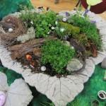 rhubarb leaf faery garden